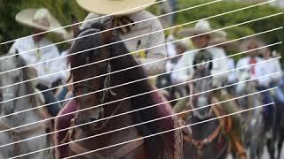 Yo amo ayotlan #jalisco #ayotlan #tradiciones #fiestas