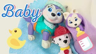 Paw Patrol Marshall & Everest Baby Skye visits Friend Pup Learn Colors for Children