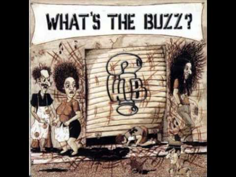 What's The Buzz? - Raindrops On A Dirty Sidewalk