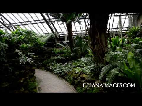 Garfield Park Conservatory Chicago Spring 2013 Virtual Tour