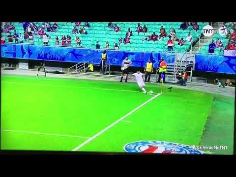 GOLS Bahia 1x2 Athletico-PR | Campeonato Brasileiro | 05/10/19