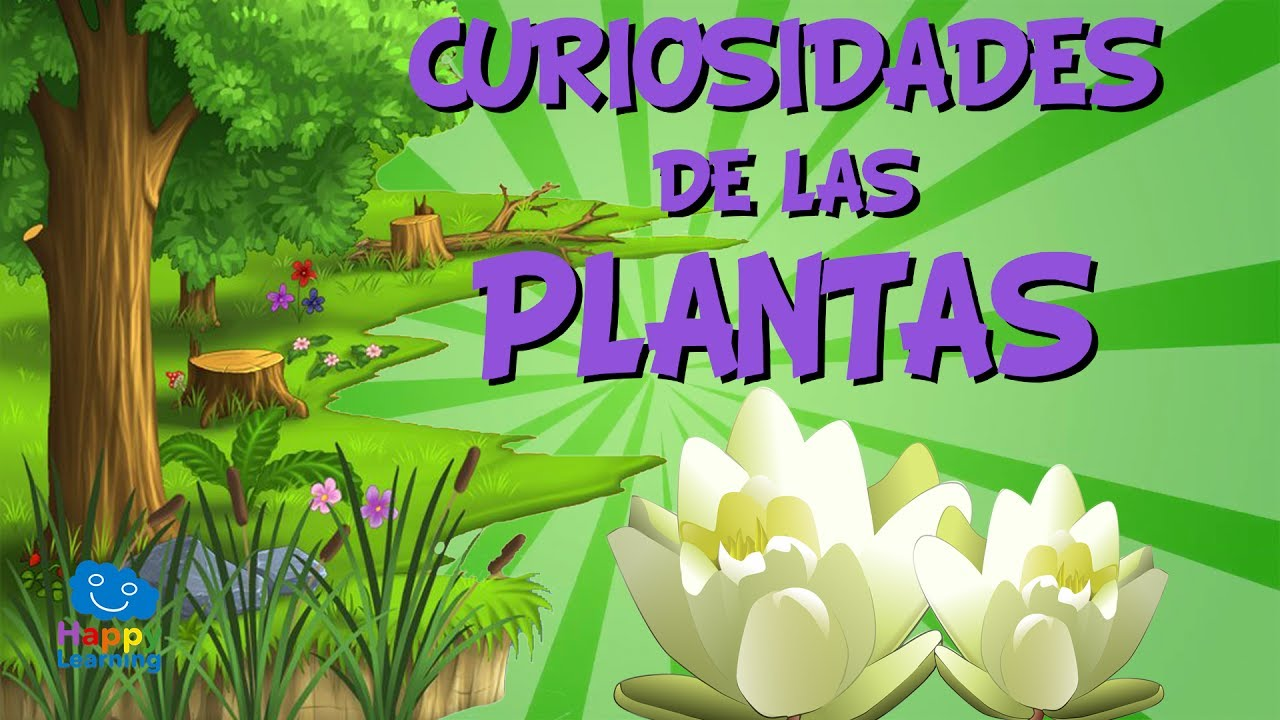 curiosidades de las plantas videos educativos para ni os