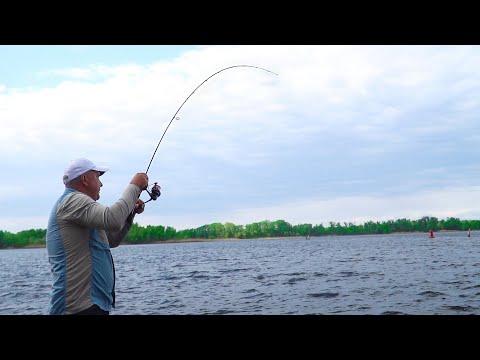 Ловля ХИЩНИКА на ХИТРУЮ БЛЕСНУ! Рыбалка с берега на спиннинг!