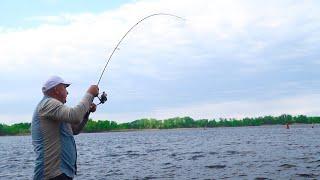 Ловля ХИЩНИКА на ХИТРУЮ БЛЕСНУ Рыбалка с берега на спиннинг