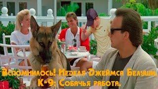 Вспомнилось! Неделя Джеймса Белуши. К-9: Собачья работа.