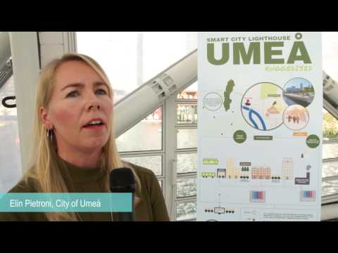 RUGGEDISED Umeå interview