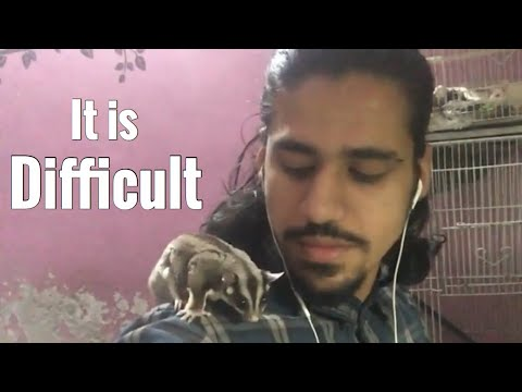 My most Challenging Pet | Wildly Indian
