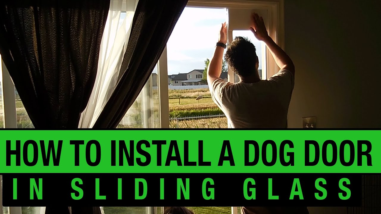 How To Install A Dog Door In A Sliding Glass Door Petsafe Dog Door