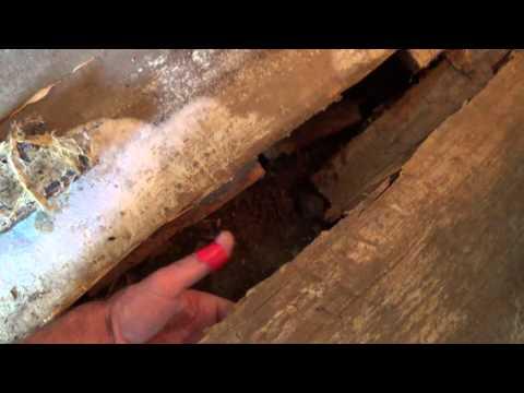видео: Пол в бане- КАК НЕ НАДО ДЕЛАТЬ!!! (Ошибки при строительстве) ЧАСТ 1