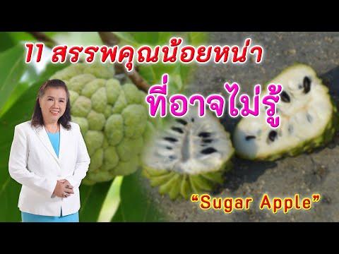 รีบหามากิน !! 11 สรรพคุณน้อยหน่าดีต่อสุขภาพที่คุณอาจยังไม่รู้ | Sugar Apple | พี่ปลา Healthy Fish
