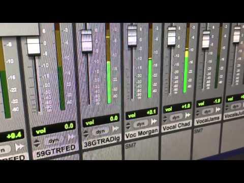 Senior Fellows - Studio Bits