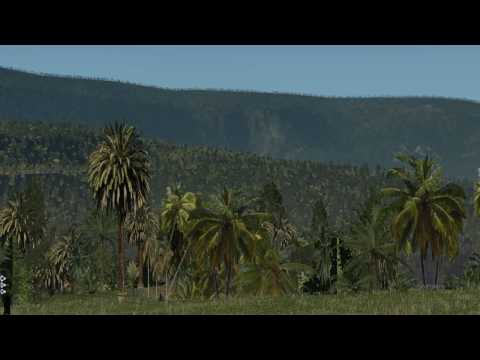 X-Plane 11 Susi Air Papua Adventures Part 2 South West Papua