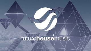Avicii - Levels (Kaan Pars Tribute Remix) Future House Top 50 Playl...