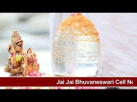 SriChakara Linga River Pooja Beas River HimachalPradesh || Bharadwaj Swami