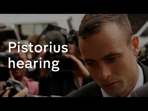 Oscar Pistorius: murder charge appeal