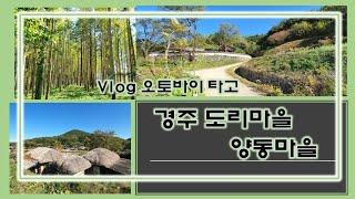경주도리마을/양동마을/오토바이드라이브/가을여행