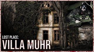 Wir besuchen die Villa Muhr und stürzen fast ein