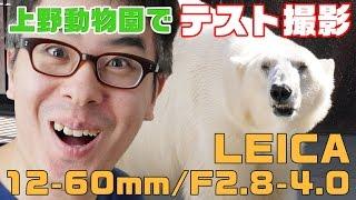 上野動物園でテスト撮影してきました!Panasonic LEICA DG VARIO-ELMARIT 12-60mm/F2.8-4.0