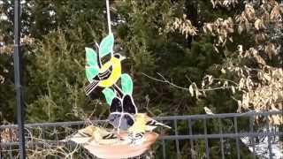 Goldfinch Stained Glass Bird Feeder(ge212)