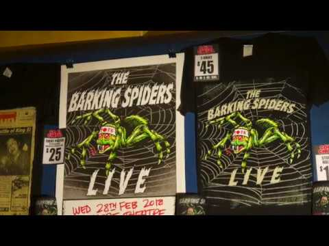 The Barking Spiders Live @ The Enmore Theatre 28-2-18 (aka Cold Chisel)