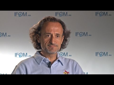 Interview with Giorgio Scita, IFOM - University of Milan