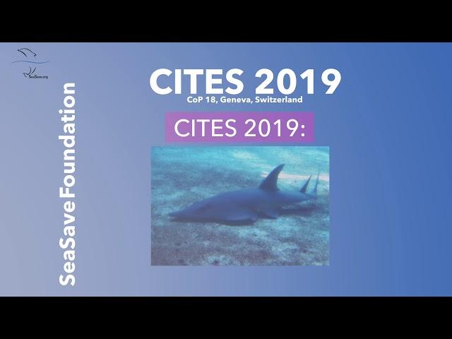 Marine species @CITES 2019