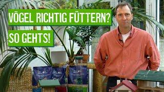 Vögel Im Winter Füttern - Aber Richtig! - Der Grüne Tipp Kompakt