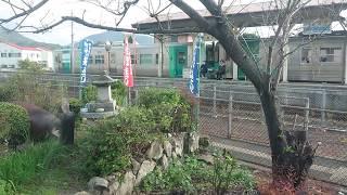 JR四国N2000系うずしお6号勝瑞から池谷