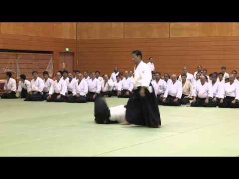 Japan - 11th International Aikido Federation Congress in Tokyo - Demonstrations