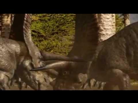 Torosaurus perforated lizard .