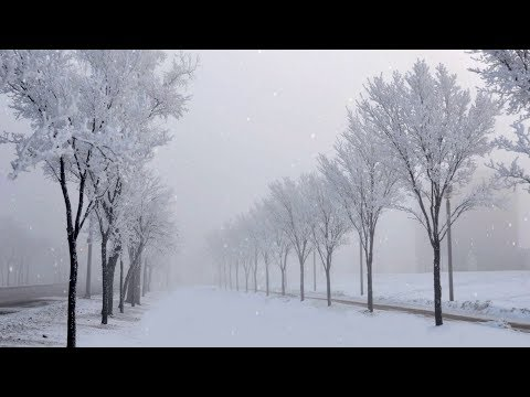 After effects tutorial: Particles-Snowfall (Simple way!).