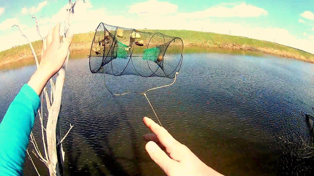 Рыболовная снасть верша, морда в действии. Часть 2