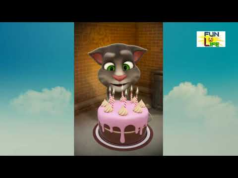 Billi comedy ll Talking tom funny cat videos
