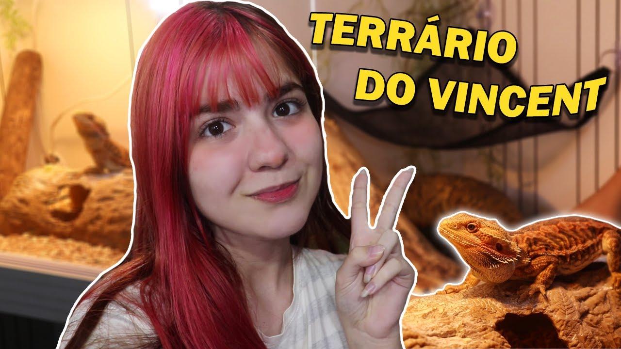 DECORANDO O TERRÁRIO NOVO DO VINCENT (meu dragão barbudo) 🦎✨🐉