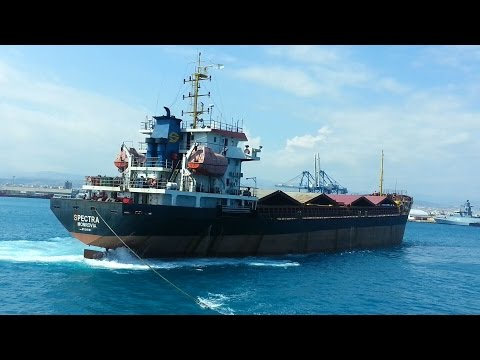 SPECTRA-General dry cargo vessel