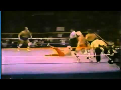 Barry Windham and Mike Rotundo come out to Real American