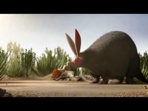 ANTS Teamwork - Video.mp4 - YouTube - photo#28