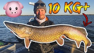 4 BIG LAKE tips you SHOULD KNOW for 10kg+ PIKE | Team Galant (English Subtitles)
