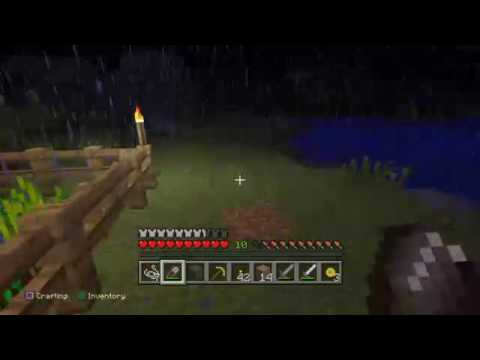 Minecraft with Dark Grey Fire Wolf #2 (CREEPERS EVERYWHERE)