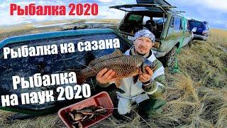 Рыбалка 2020 Рыбалка на паук 2020 с Дмитрием Павловичем, поймал первого сазана сезона 2020 рыбалка!