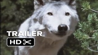 Video White Wolves III: Cry of the White Wolf OFFICIAL Trailer download MP3, 3GP, MP4, WEBM, AVI, FLV Agustus 2017
