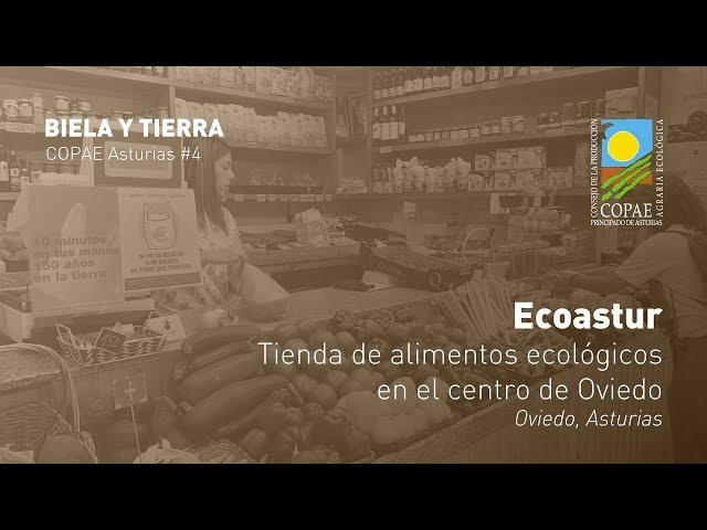 Tienda de alimentos ecológicos en el centro de Oviedo