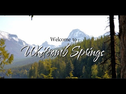 Whitcomb Springs Book Trailer