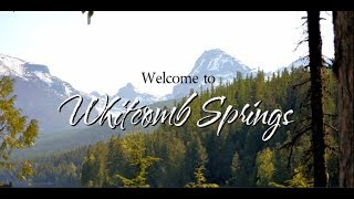 Welcome to Whitcomb Springs (Book Series)