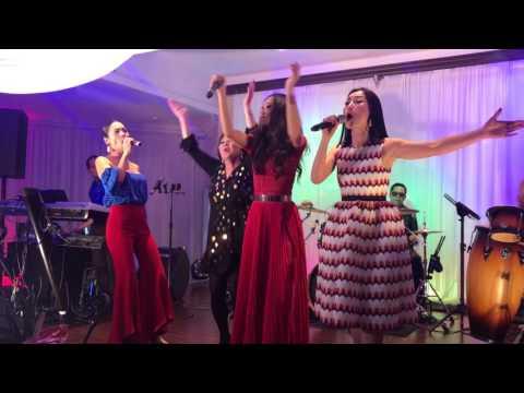 Hoang Anh's 70th Birthday: Performances by Bao Han, Truc Linh and Loan Chau