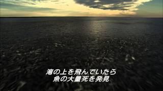 ブルーレイ&DVD『ザ・ベイ』 トレーラー 10月22日リリース