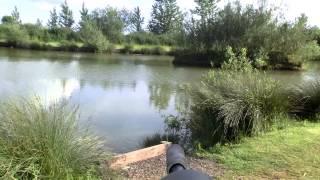 Air Rifle Hunting Rabbits At The Fishing Lakes