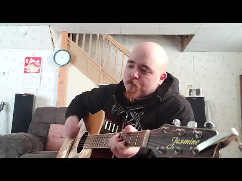 Timmy Bobby-Soul Bleed(damageplan acoustic cover)