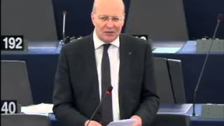 Andrew DUFF 11 Dec 2013 plenary speech on Relations between the European Parliament and the i