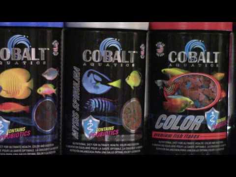 Cobalt Aquatics Premium Flake Food Review